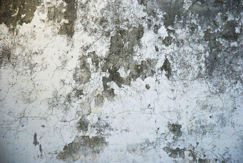 Texture sale de mur photos libres de droits