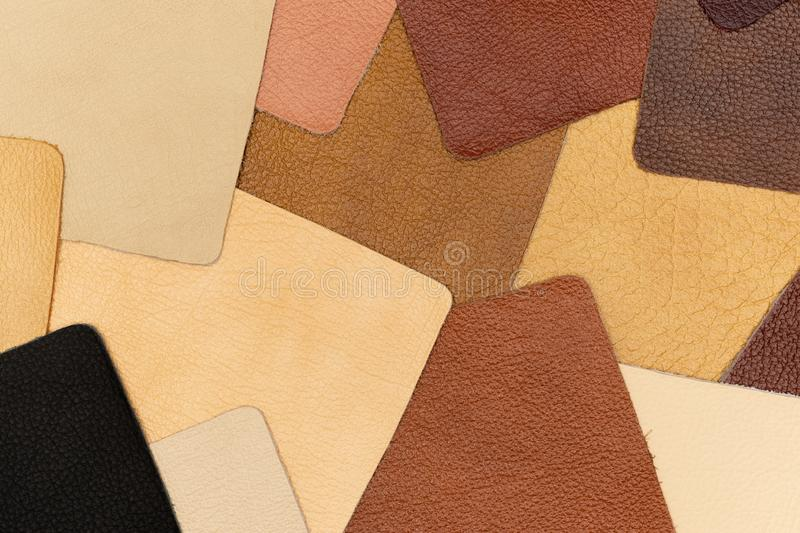Texture from samples of genuine leather. Leather background. royalty free stock image