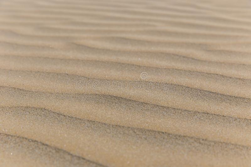 Texture of sand on the beach. Nature stock image