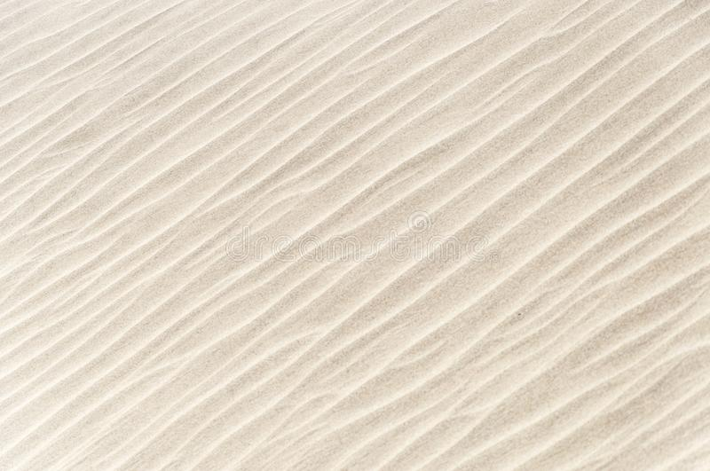 Off white sand texture on the beach in the Oman royalty free stock images