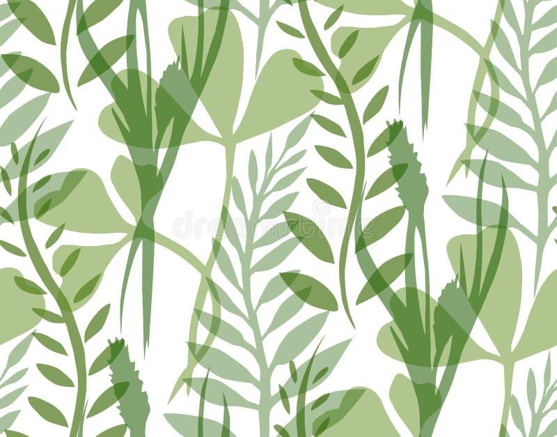 Texture sans couture avec les plantes et les herbes transparentes illustration de vecteur
