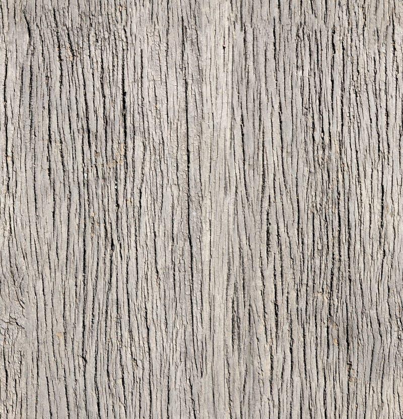 Texture sans couture de vieux panneaux en bois de couleurs grises photographie stock
