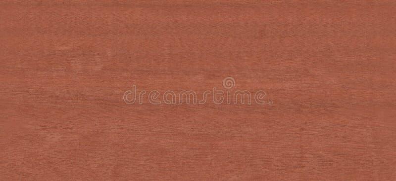 Texture sans joint en bois Goncalo Alves de monde réel image stock