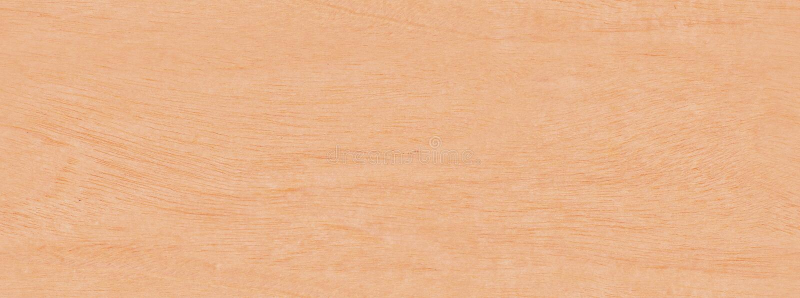 Texture sans joint en bois Primavera de monde réel photo stock