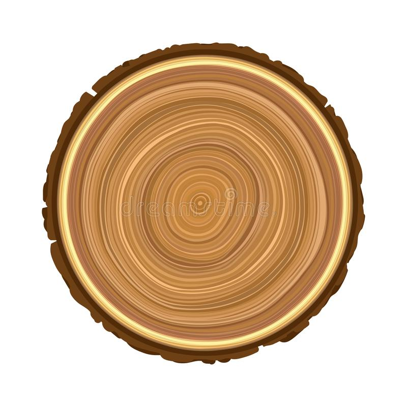 Texture of sawn wood brown object tree vector illustration