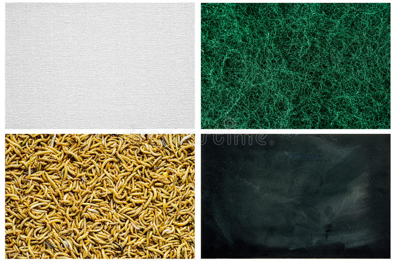Texture Series - Steel wool,mealworm, linen canvas,Dirty Blackboard. royalty free stock image