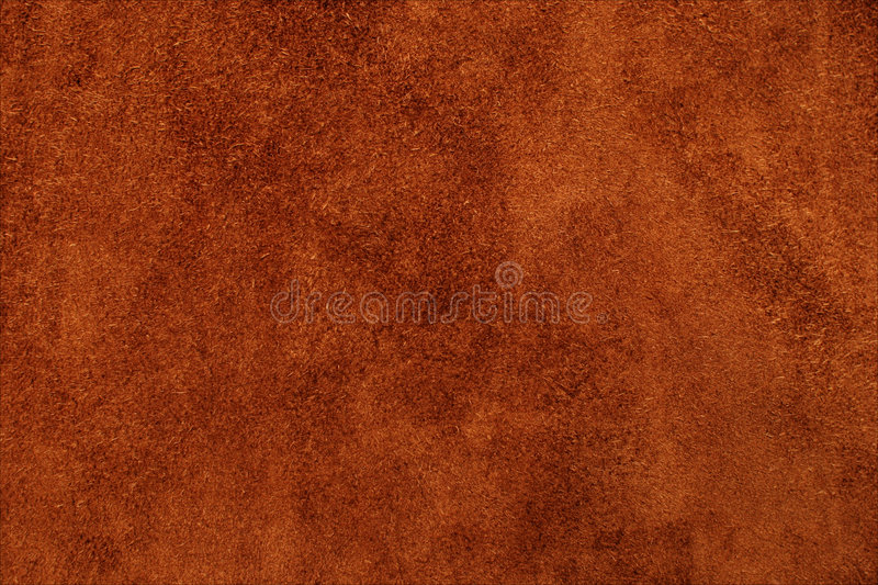 Texture is a skin. Texture of skin for a design stock image