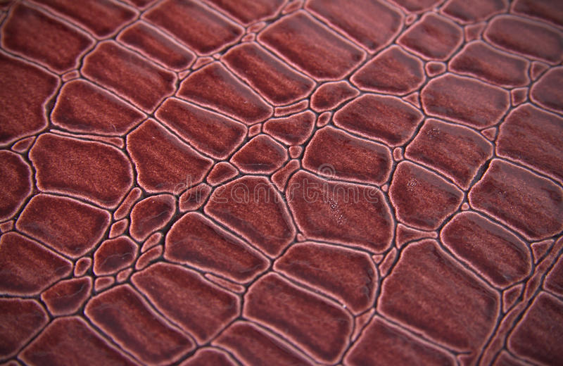 Download Texture Of A Skin Of A Snake Stock Image - Image: 25243591