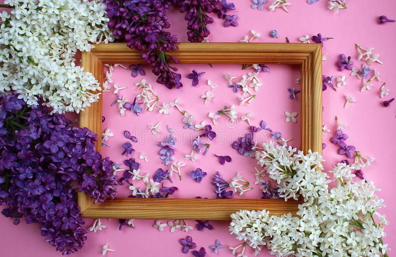 Texture of small flowers of lilac of different shades of purple around the frame royalty free stock image