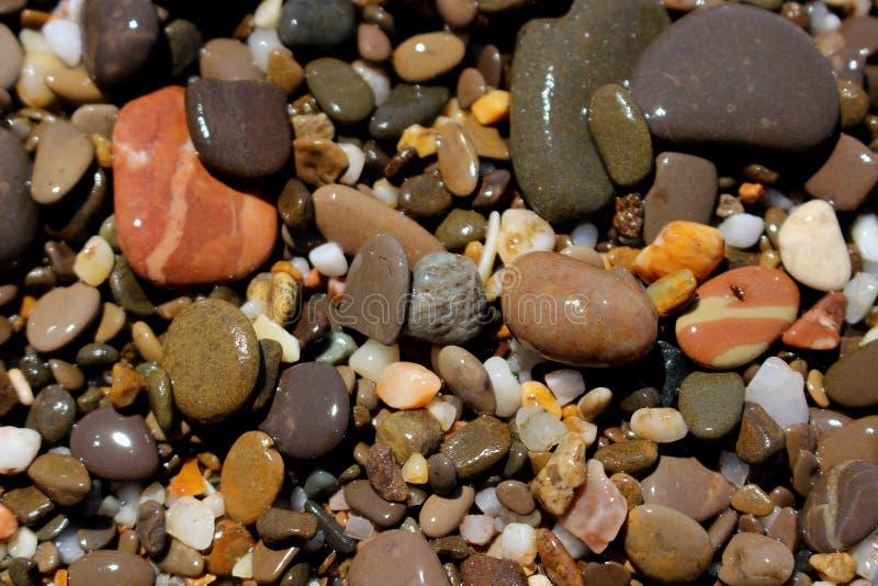 Beach bright pebbles stock photos