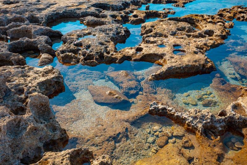 The texture of the stony sea shore. Rosh Hanikra, Israel royalty free stock photography