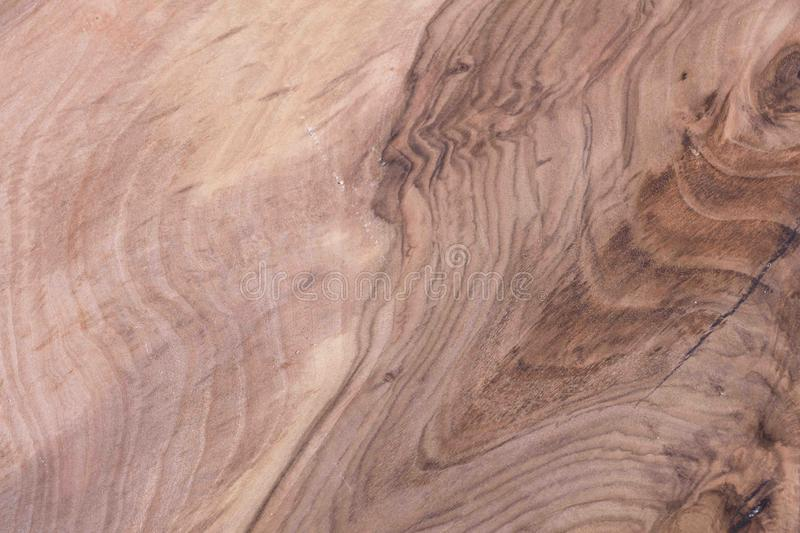 Texture structure and walnut pattern. stock photo