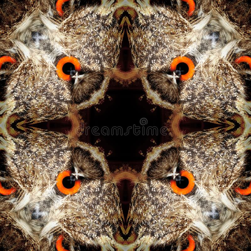 Texture symétrique sans couture de plumes d'oiseau d'abrégé sur modèle illustration de vecteur