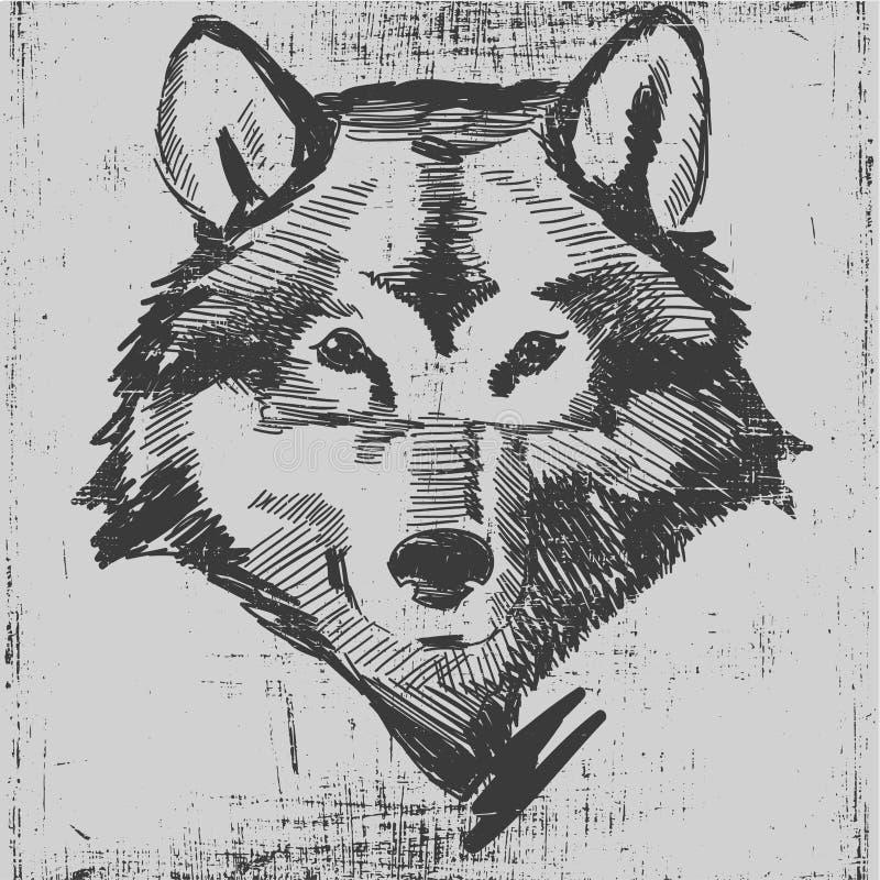 Texture tirée par la main principale de grunge de croquis de loup illustration stock