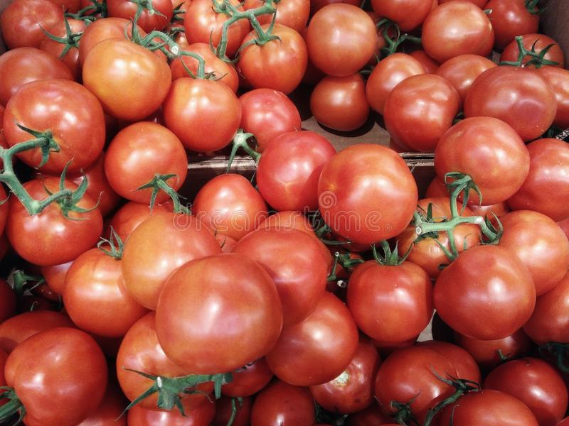 Texture of tomatoes outdoors stock photos
