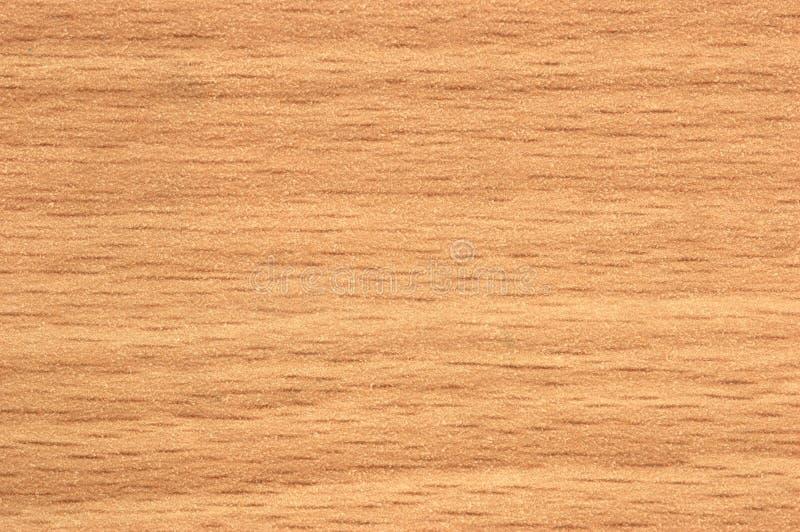 texture trä royaltyfria bilder
