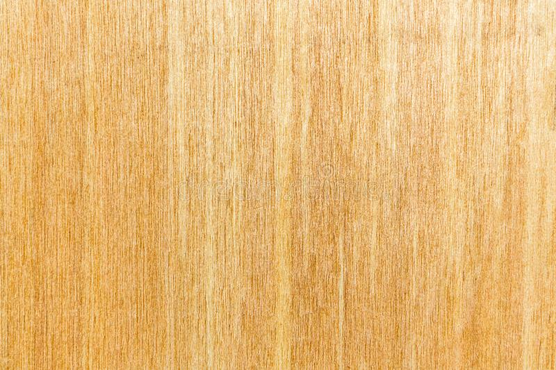 Texture of a tree. royalty free stock photo