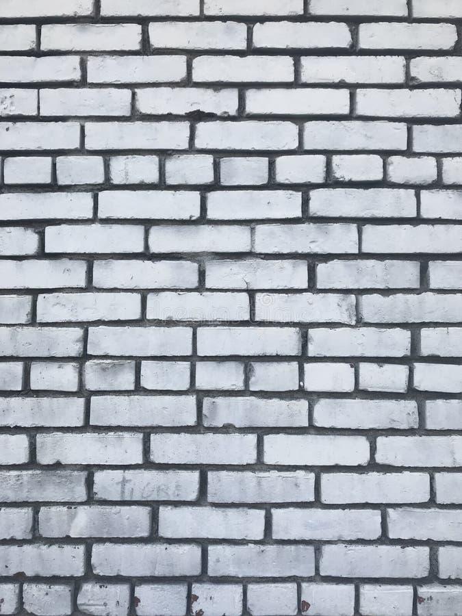 Texture urbaine de ville de mur de briques blanc sale photos libres de droits