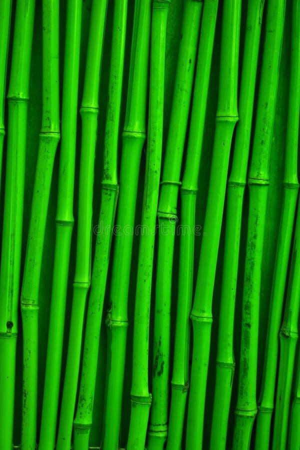 texture verte en bambou image libre de droits