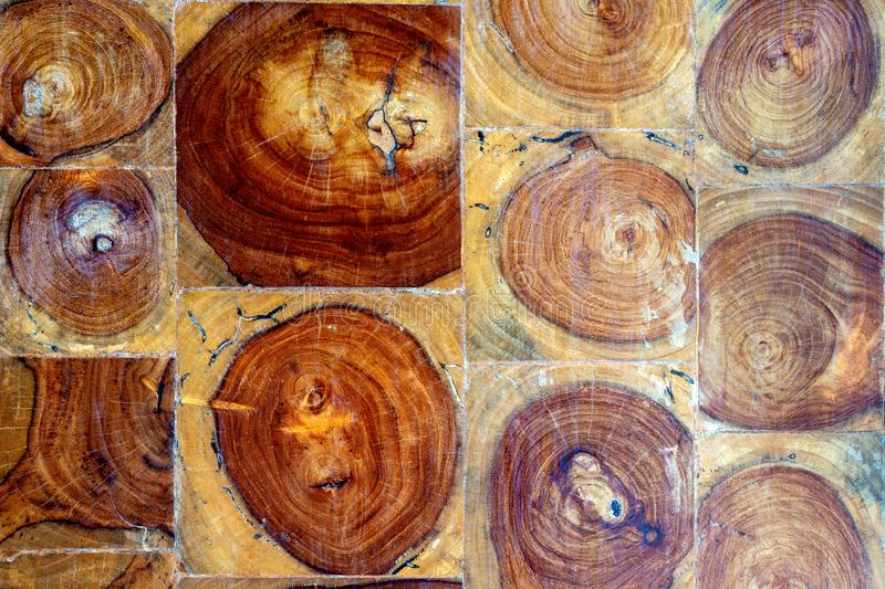 Texture of wall wood background brown wood stock images