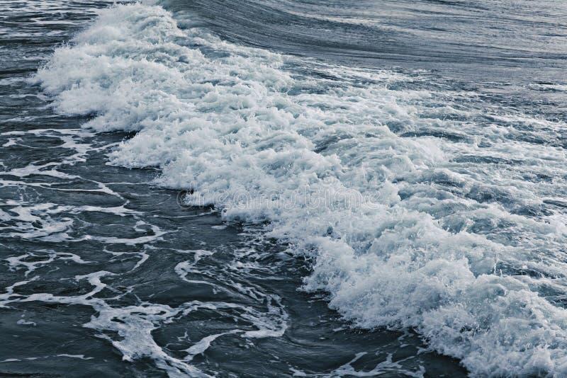 Texture waves sea storm. Gray foam stock image
