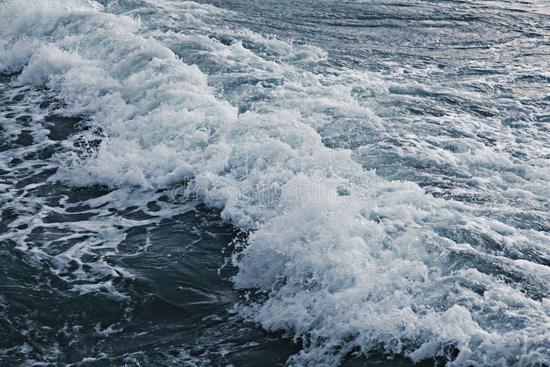 Texture waves sea storm. Gray foam royalty free stock photography