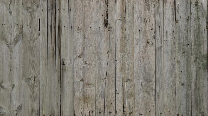 The texture of weathered wooden wall. Aged wooden plank fence of vertical flat board royalty free stock images