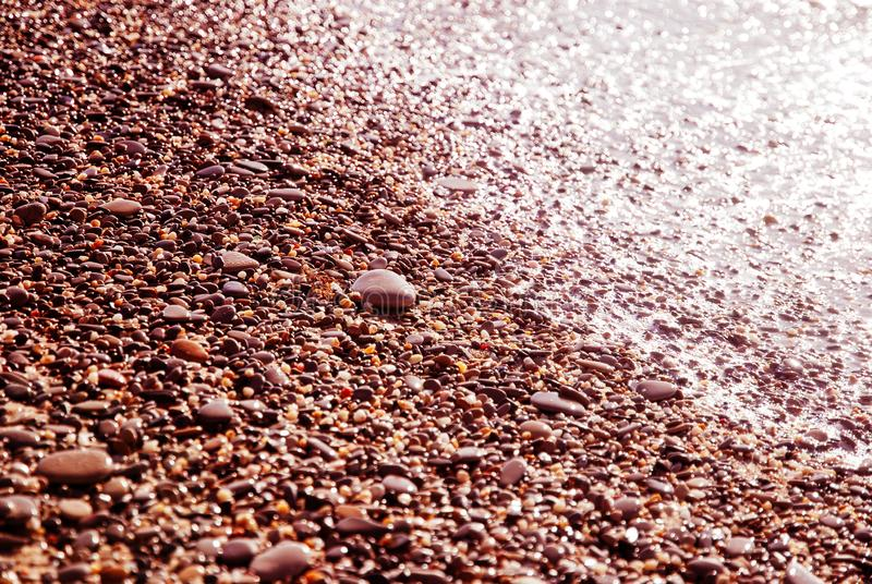 Wet pebbles on sea shore in pink sunlight royalty free stock images