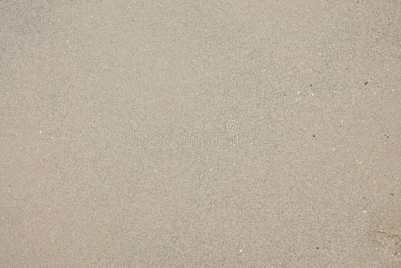 Texture Of Wet Sea Sand Stock Photography