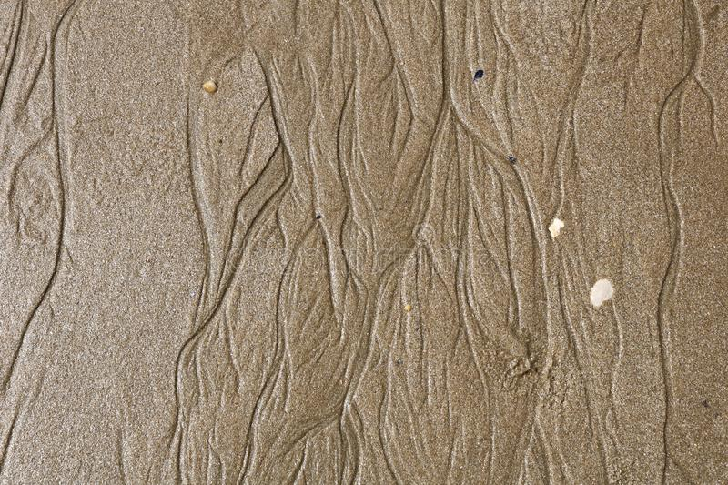 Texture of wet sea sand and stones stock images