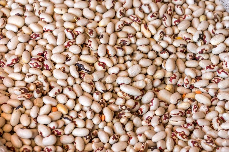 The texture of the white beans healthy food.  stock photos
