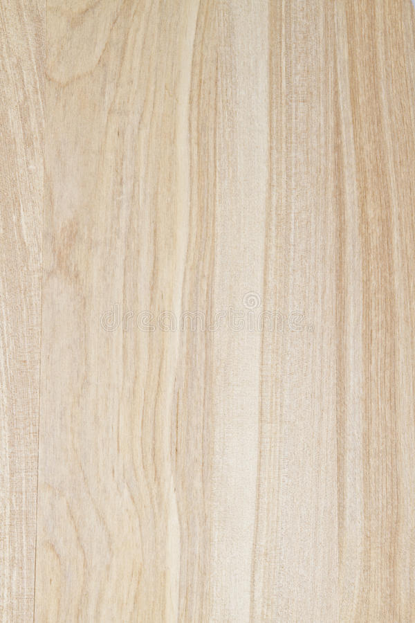 Texture of wood background. Closeup stock photo