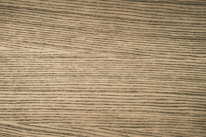 Texture of wood background close up. Empty template. royalty free stock images