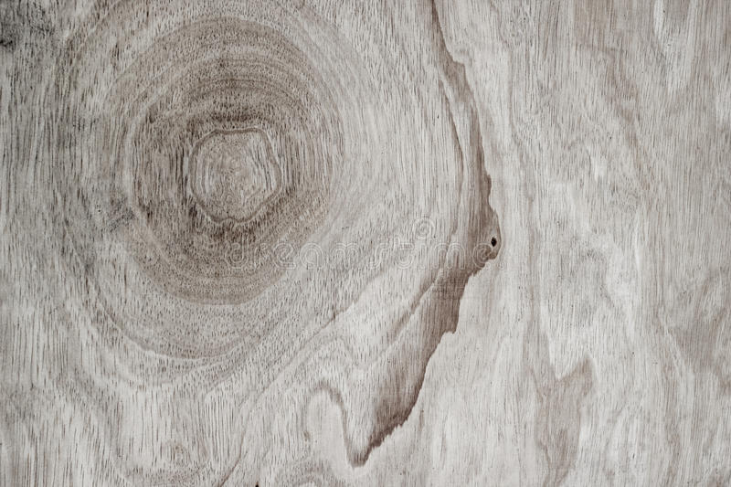 Texture of wood background closeup. Abstract, architecture, backdrop, background, board, bright, build, close, closeup, decor, decoration, design, detail, door royalty free stock image