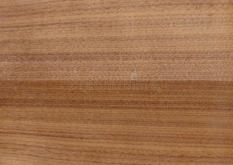 Texture of wood background closeup. stock photography