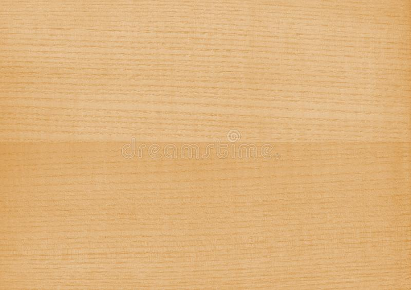 Texture of wood background closeup. royalty free stock images