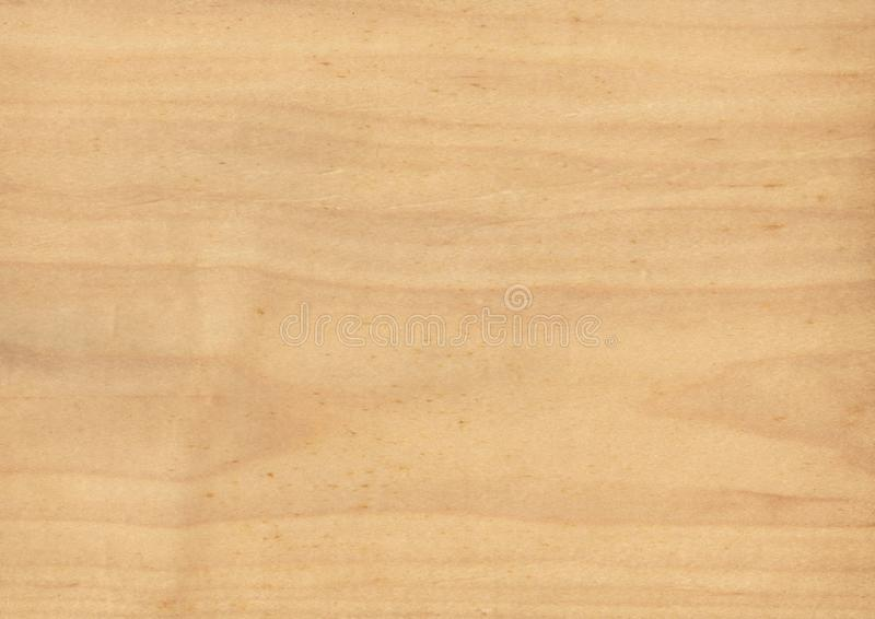 Texture of wood background closeup. stock image