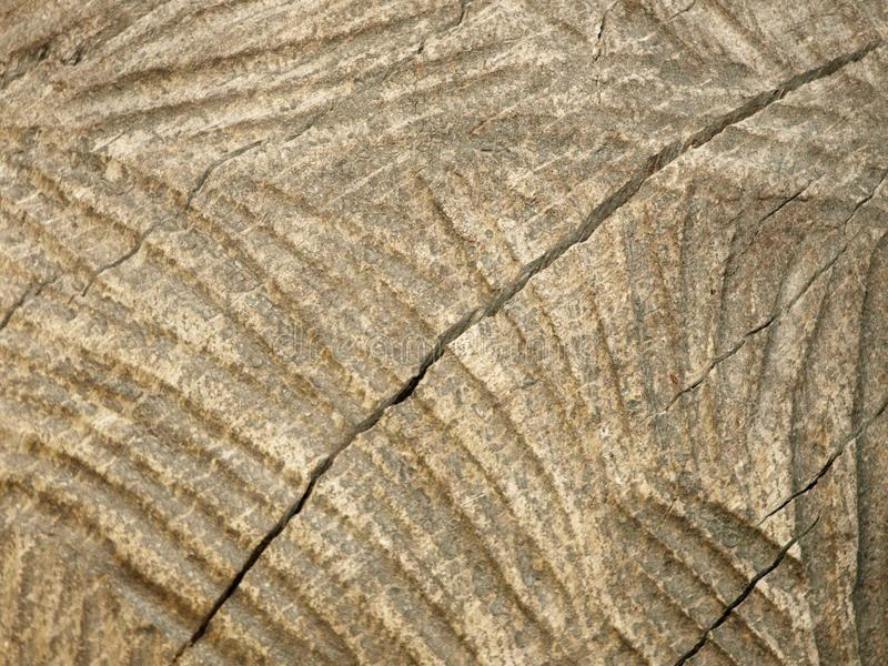 texture of wood processing royalty free stock image