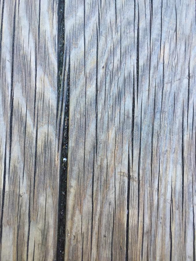 Texture wood royalty free stock photos