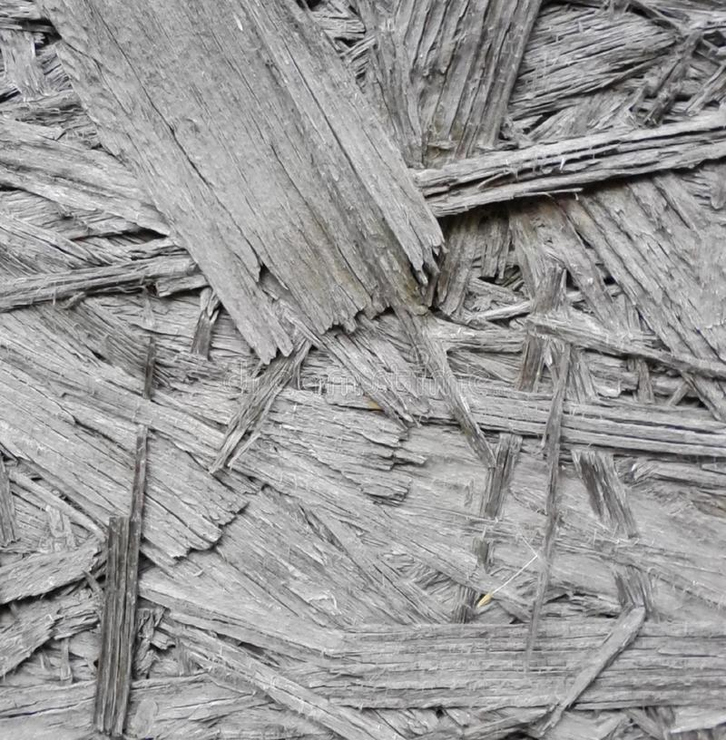 The texture of wood. stock photo