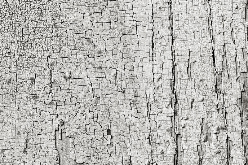 Texture of wooden barn board faded remnants of old paint. Background texture of wooden barn board faded remnants of old paint royalty free stock photos