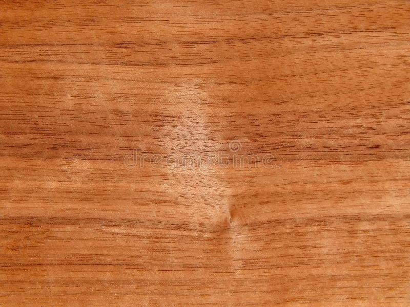 Texture of a wooden surface of an American walnut tree. Wood veneer for furnitur royalty free stock images
