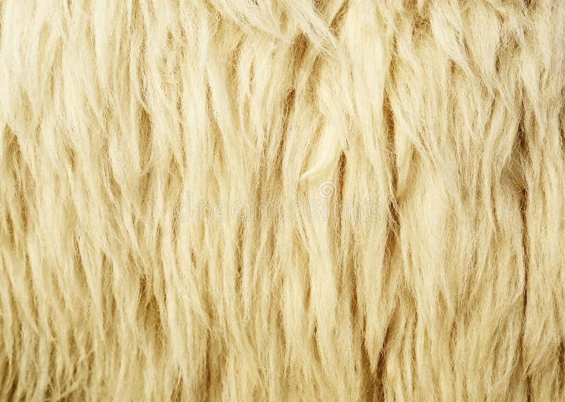 Texture Of Wool Royalty Free Stock Images