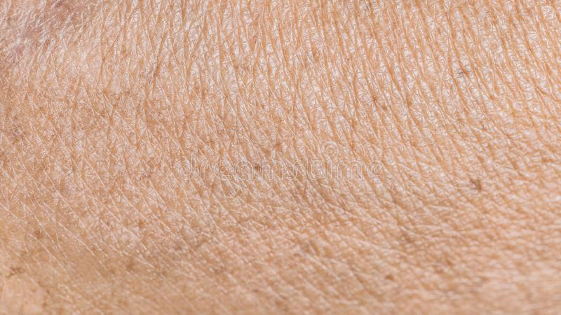 Texture wrinkled of old human skin royalty free stock photography