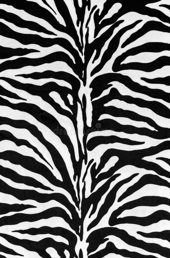 Texture of zebra skin royalty free stock photo