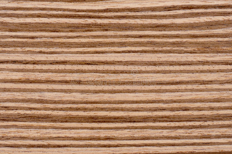 Texture Zebrano Wood Background royalty free stock photos