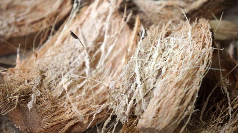 Texturebackground das fibras de coco fotografia de stock