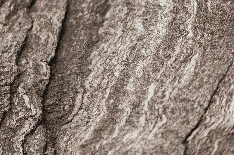Textured Abstract Stone stock image