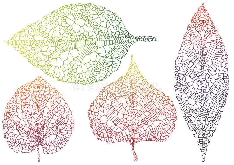 Download Textured autmn leaf stock vector. Image of illustration - 15924696