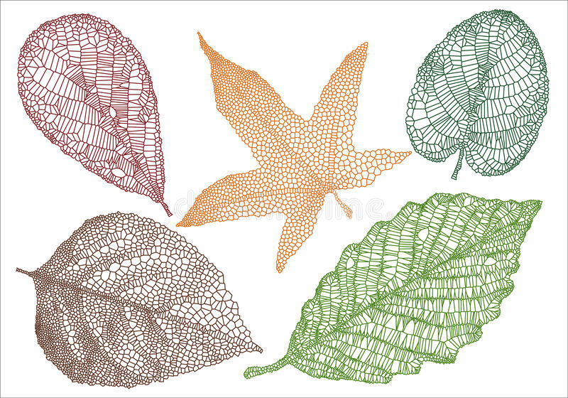 Textured autumn leaves royalty free illustration